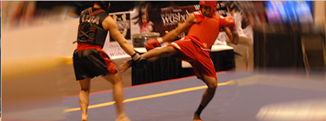 Bermuda Sanshou Association Banner Right Top Image