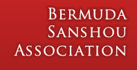 Bermuda Sanshou Association Banner Left Gradient Image